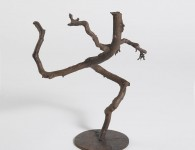 "Running Root, bronze from pine branch, 10.5"" x 9"" x 8"""