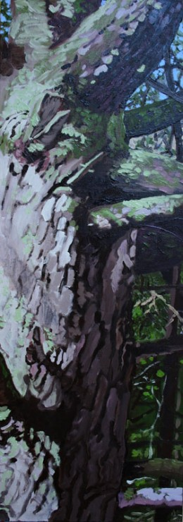 "Wolf Tree, oil on canvas, 30"" x 10"""